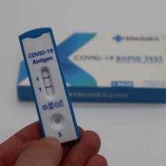 How can employers introduce COVID-19 rapid workplace testing?