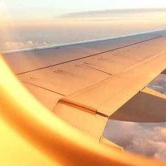 From Covid Tests to Flying – How You Can Manage Stress and Tackle Work related Travel Anxiety Post-Pandemic