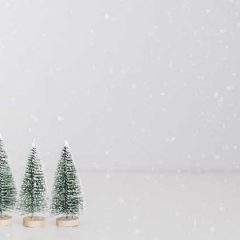 All employers want for Christmas is staff
